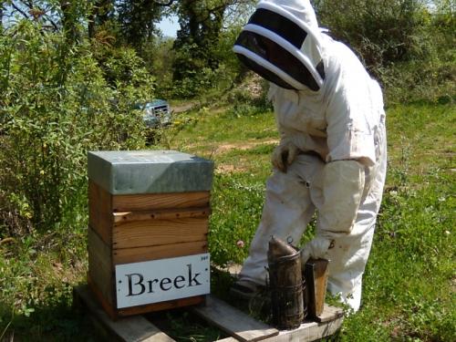 La ruche Breek !