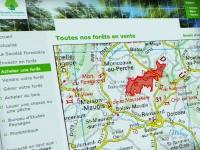 Assistance à maîtrise d'ouvrage pour la création de forestiere-cdc.fr
