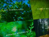 Refonte de forestiere-cdc.fr en Drupal 8