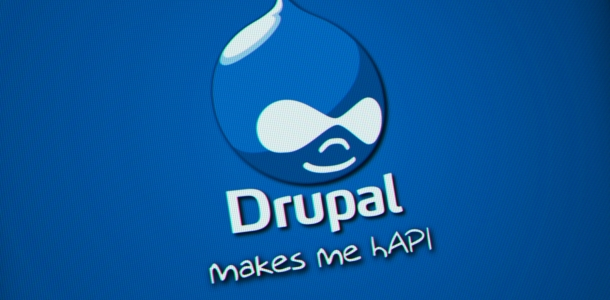 Conception et animation d'une formation Drupal sur mesures.