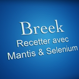 "Formation ""recetter avec Mantis & Selenium"""