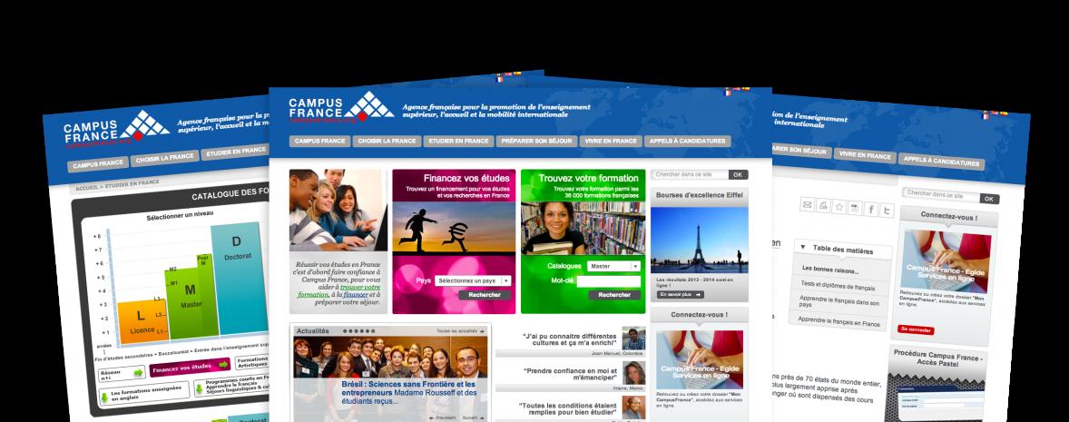 Cadrage, expression du besoin, étude de faisabilité de la refonte de 50 sites web (Drupal)
